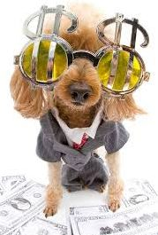 """Is your """"no pet's"""" policy costing your more money than it is saving you?"""